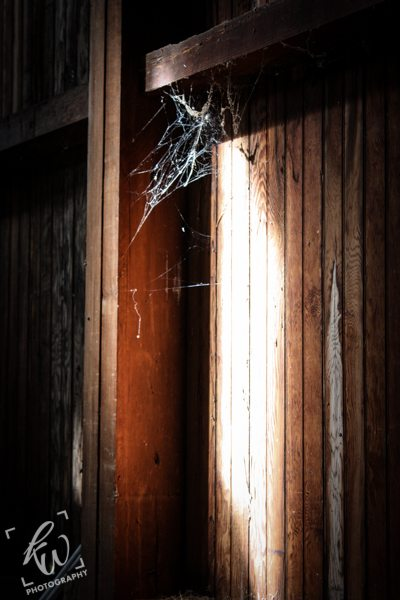 Sunlight shines down on a spider web in abandoned barn.