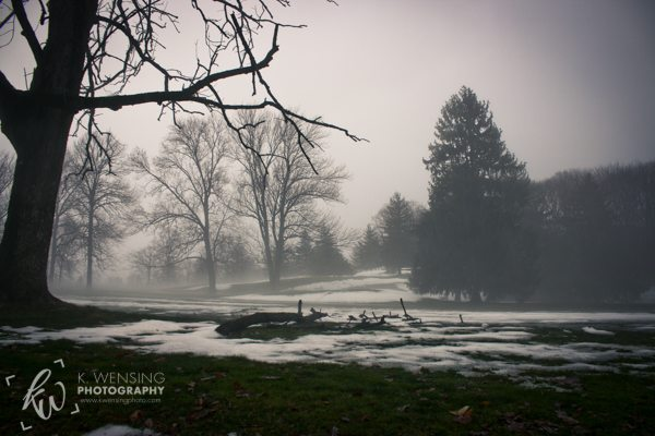 Fog covered landscape in Norristown, PA.
