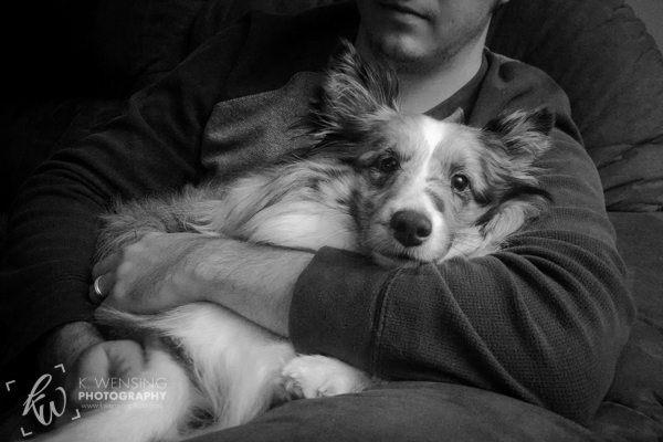 Zoey cuddling with her daddy. This shy dog is too tired and comfortable to care.