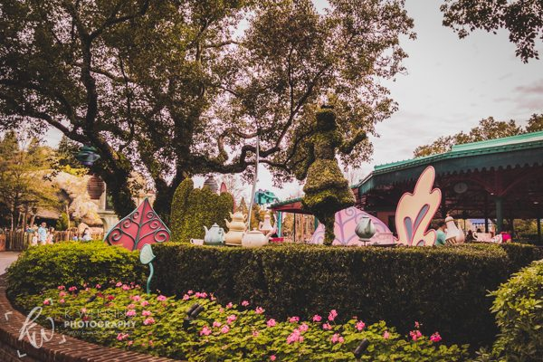 Some Wonderland lawn art!
