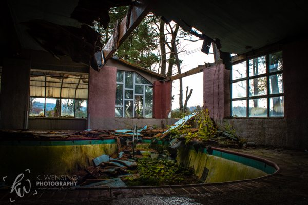 An abandoned pool now overgrown by nature.