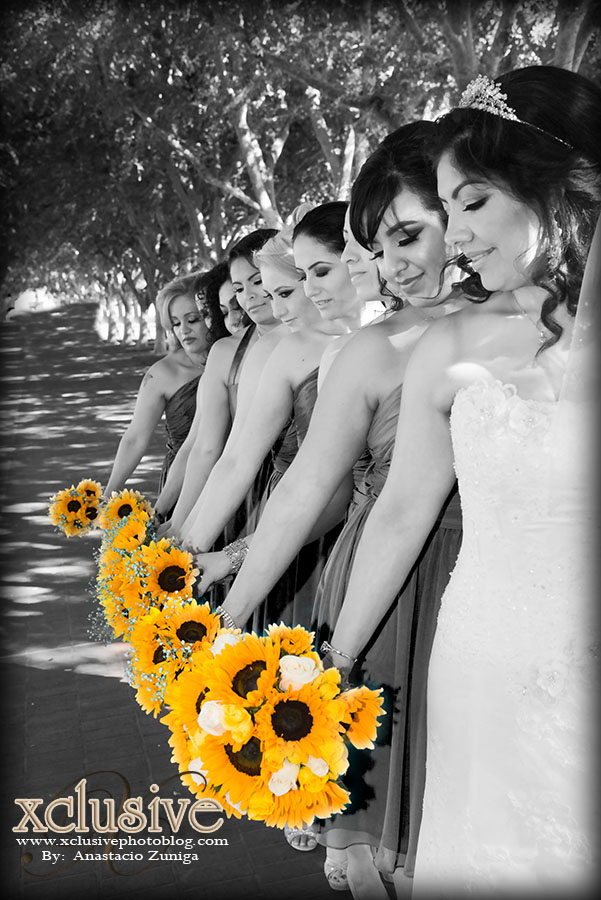 bay area wedding photography, environmental wedding portraits, wedding outdoor photo session, wedding photography, wedding photographer, wedding photography, san francisco wedding photographer, san jose wedding photographer, wedding photos, fotografo de bodas en riverside, fotografo de bodas en orange, fotografo de bodas, foto y video en san bernardino, fotografo de boda en san bernardino, family portrait, engagement, creative photography, best wedding photographer, destination photographer, wedding photographer in los angeles, wedding photographer in San Fernando, wedding photographer in Simi valley