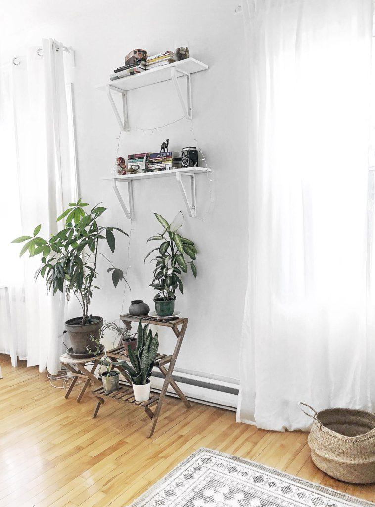 ikea, plants, shelves, lights
