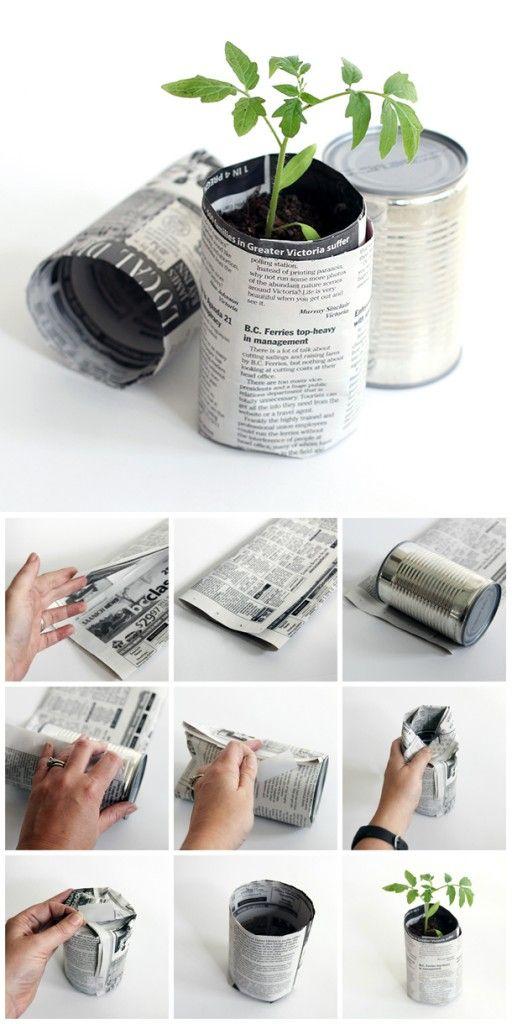 papier journal semences zero dechet