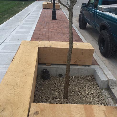 Tree Boxes