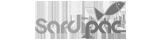 Sardipac Logo Legal and insurance client