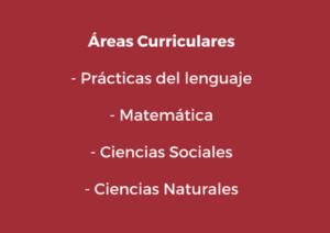 areas-curriculares-primario