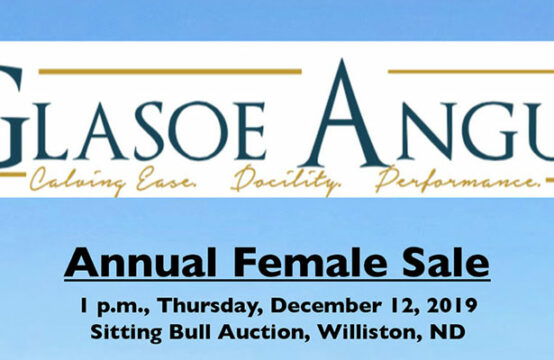 Dec 12, 2019 – Glasoe Angus Annual Female Sale