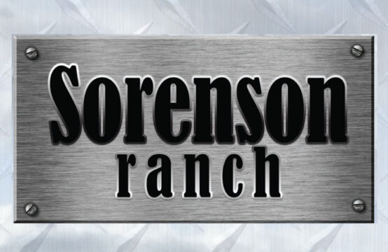 March 2, 2020 – Sorenson Ranch Sale