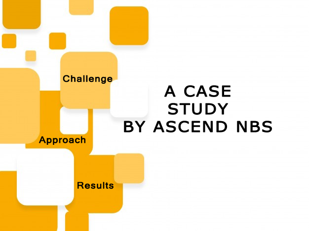 Case Study of Grant Writing by Ascend NBS