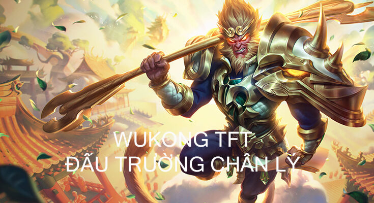 wukong-dtcl-bia