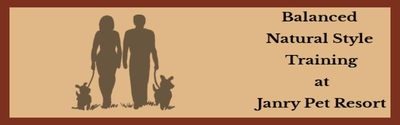 Natural Style Balanced Training at Janry Pet Resort