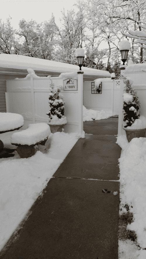 Lobby Snow