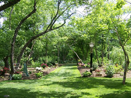nature trail 429