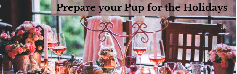 Holiday Table, prepare your pups for the upcoming holidays