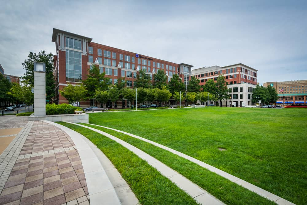 A great list of local area blogs about Alexandria, Virginia, as well as the Northern Virginia and Washington, D.C. area.