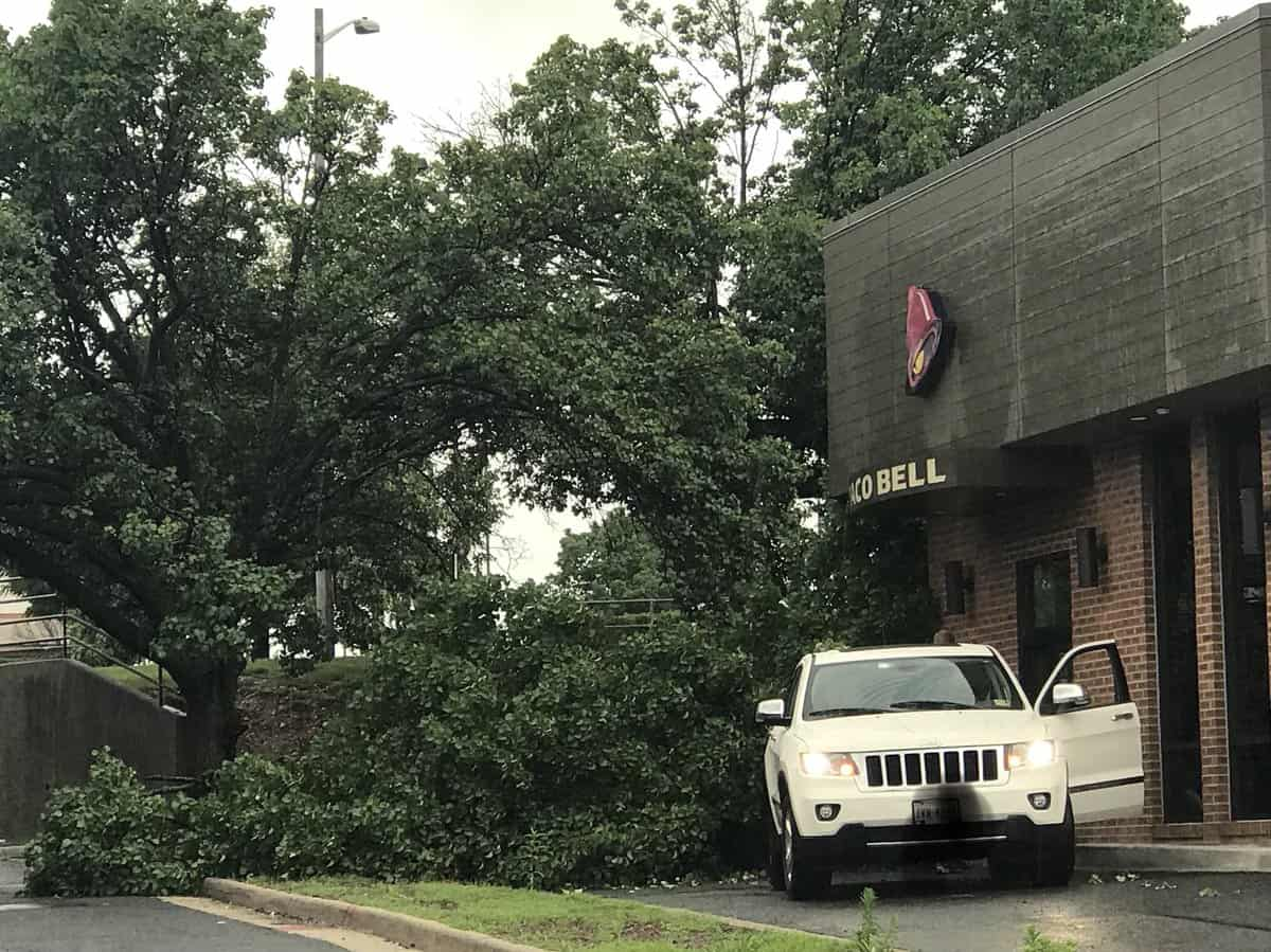 A Twitter follower reported a tree fell on to the drive-thru lane at Taco Bell in Van Dorn Plaza in Alexandria, Virginia late Sunday afternoon.