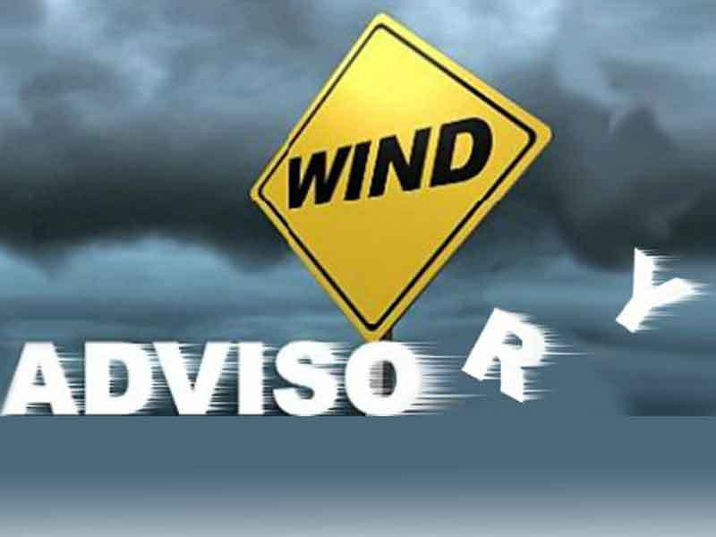 TheNational Weather Service(NWS) has issueda Wind Advisoryfor Alexandria, Virginia and the surrounding area for Wednesday, January 30, 2019, from 9:00 AM to 6:00 PM. NWS says winds will be at 25 to 35 mph with gusts up to 50 mph Wednesday.