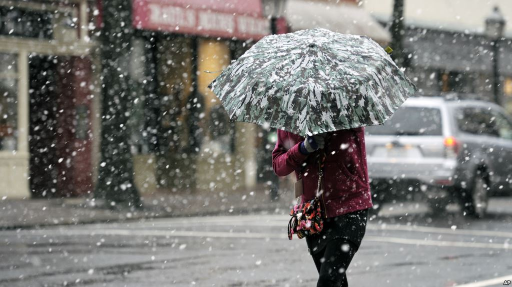 Portions of the Washington DC area including Alexandria, Virginia are getting hit with the winter storm this weekend. We'll curate and update the news on this storm in our LIVE blog.