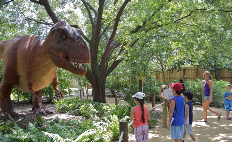 "This summer - travel back millions of years as the Smithsonian's National Zoo presents a ""Dino Summer"" featuring two prehistoric dinosaur experiences."