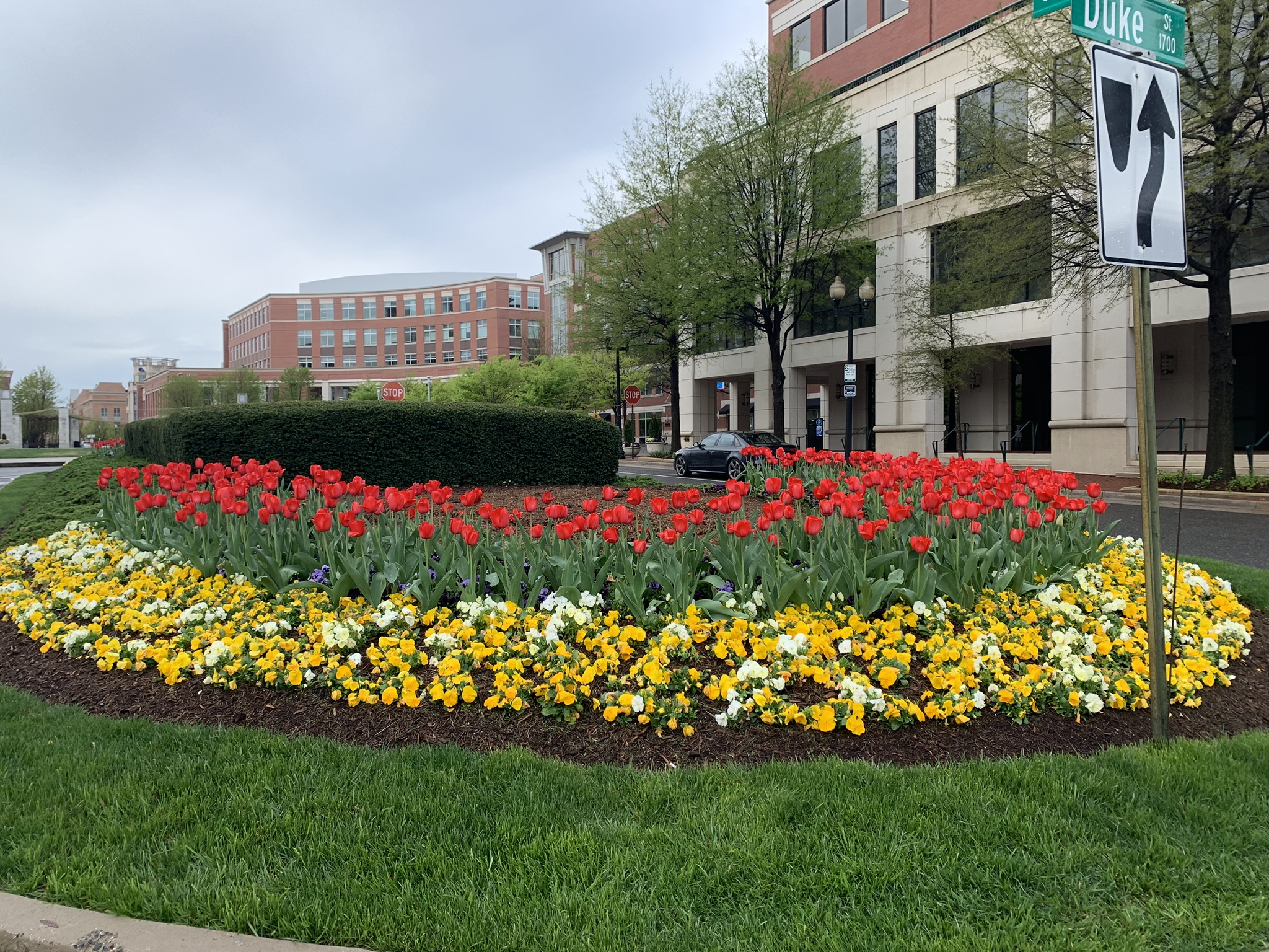 The Alexandria Beautification Commission is seeking nominations from Alexandria, Virginia residents & businesses for their 2019 Beautification Awards.