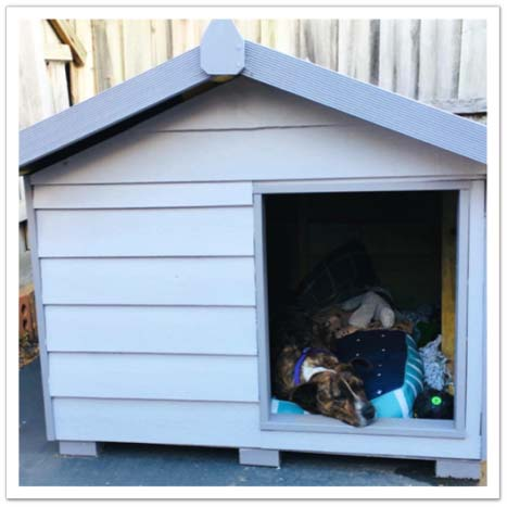 Pet Houses - THE GREAT DANE