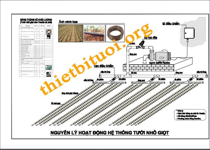 Hướng dẫn thiết kế tưới cây tự động cây cà phê - Bản vẽ hệ thống tưới