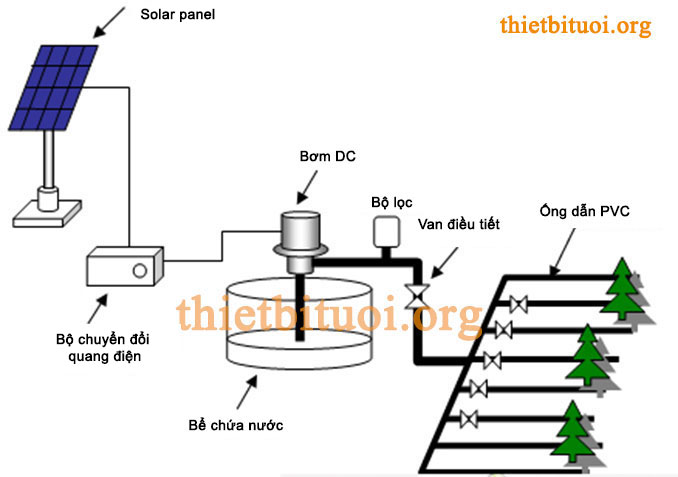 Bơm nước trực tiếp vào hệ thống tưới nhỏ giọt nhờ bộ điều khiển hẹn giờ.