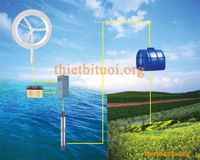 Mô hình hệ thống tưới nhỏ giọt dùng bơm DC nhờ tua pin gió