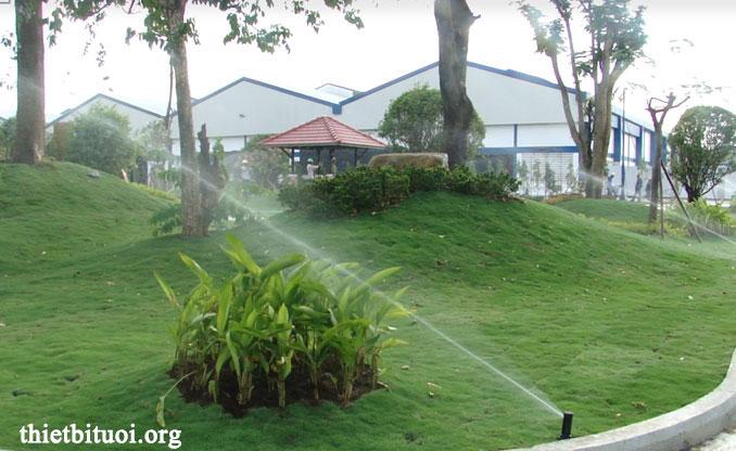 Hình ảnh thi công hệ thống tưới cỏ