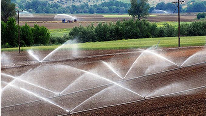 Ưu và nước điểm của hệ thống tưới phun mưa