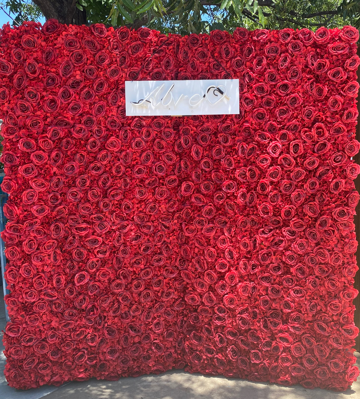 Red Rose Backdrop Wall