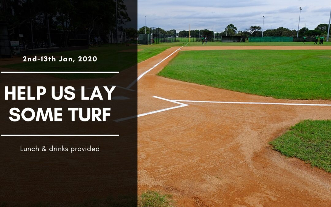 Turf Upgrade – Diamond 1