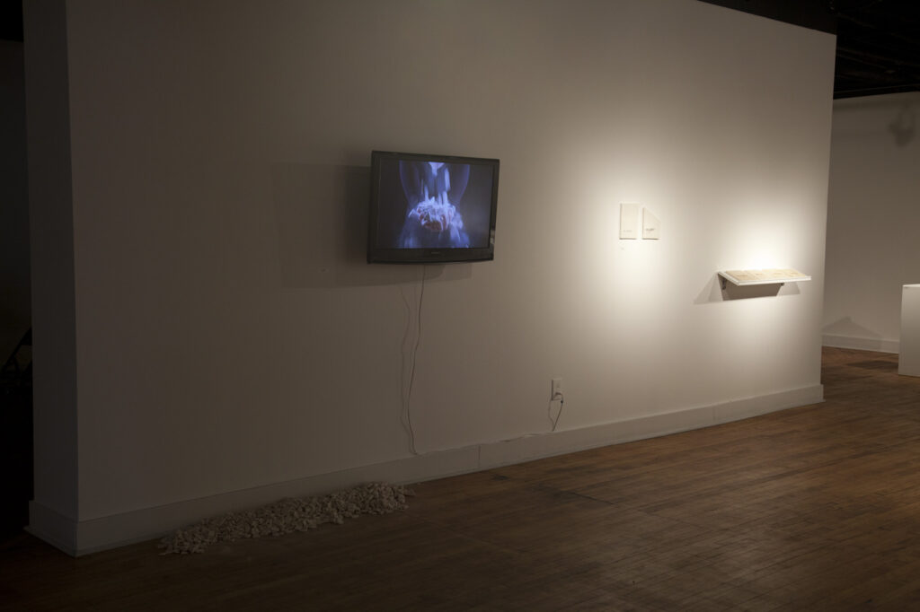 empty gallery full of art- video and ceramics on wall