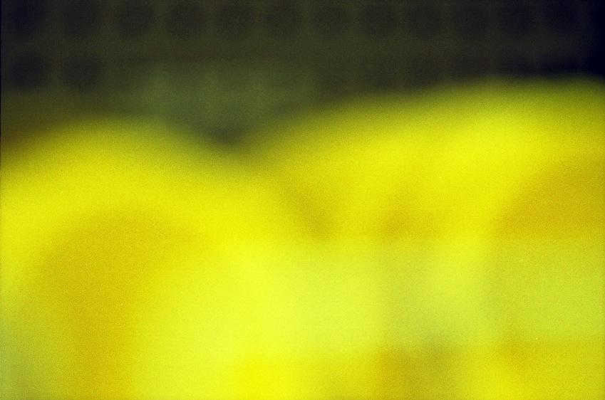Abstract yellow circular forms fade to black
