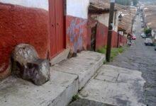 Leyenda de la Silla del Diablo de Pátzcuaro