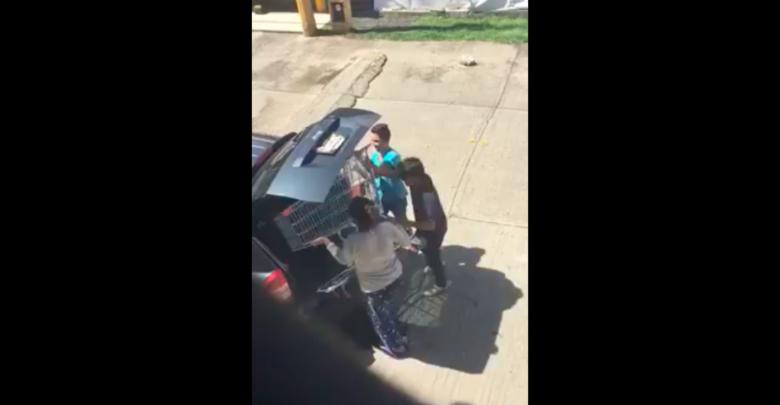 VIDEO: Se roban carrito de supermercado y los viralizan en redes