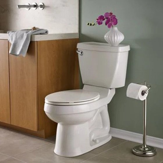 Clean a Toilet like a Pro with Krystal Clear Cleaning Referral Agency