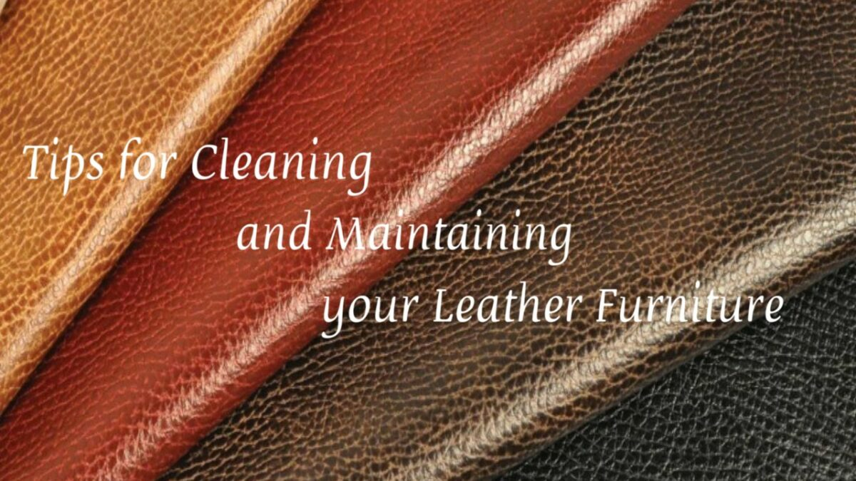 Cleaning and Maintaining Leather