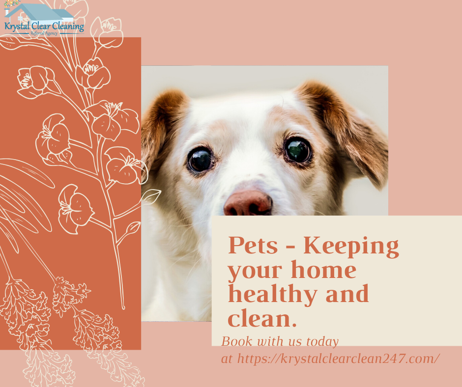 Pets – Keeping you home healthy and clean