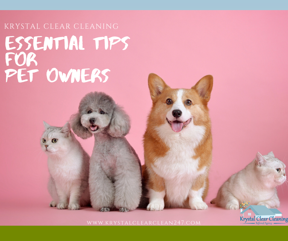 Essential Tips for Pet Owners