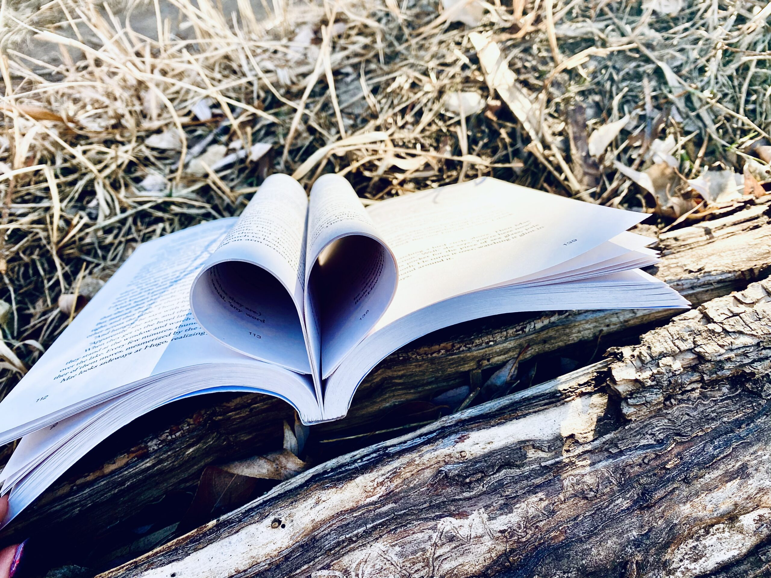 reading, writing, literature we love, beautiful books, bookstagram, books, literary