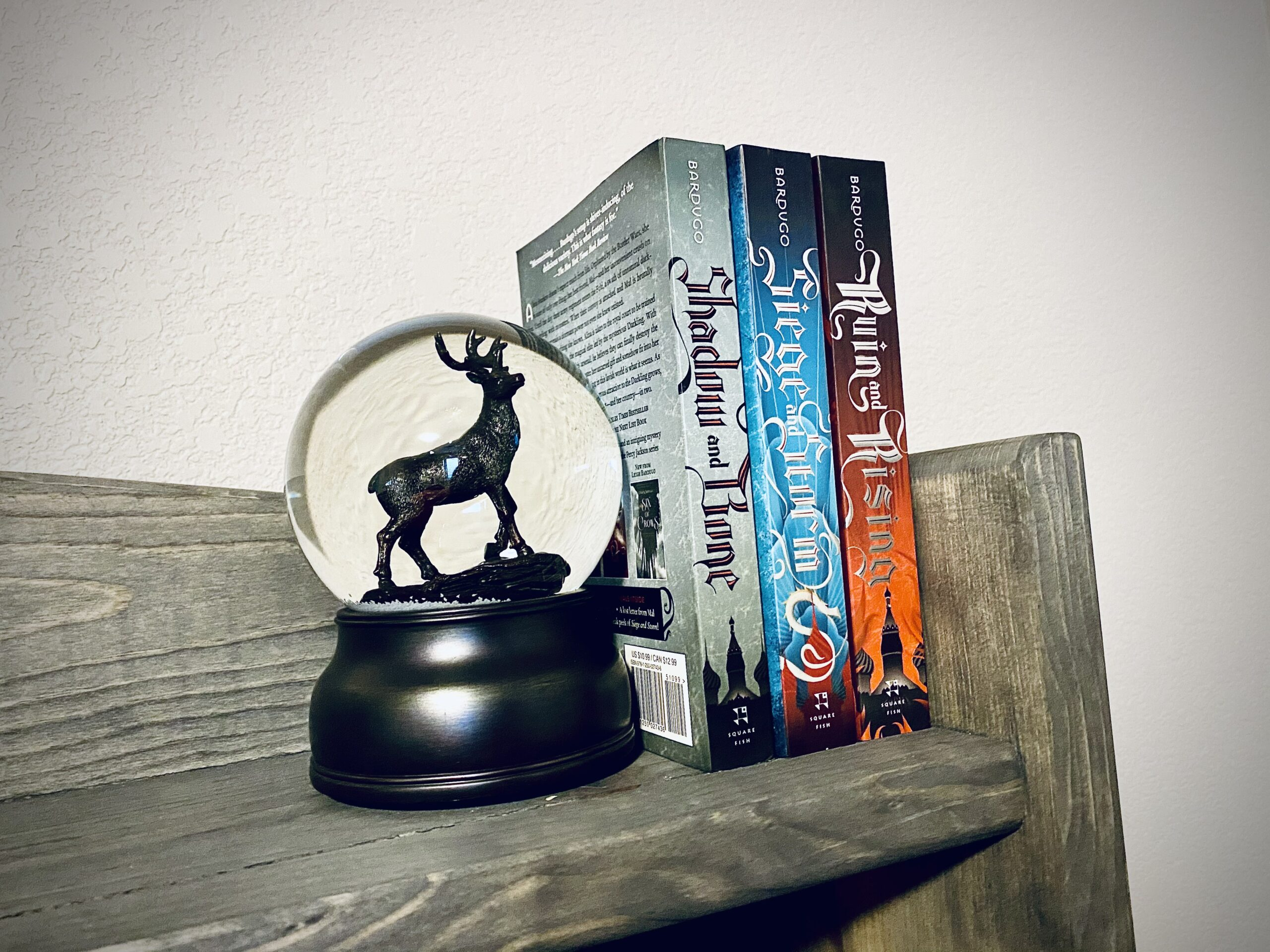 shadow and bone, nettxlix, grisha trilogy, ya fantasy, books, reading, movies based on books, 2021, films