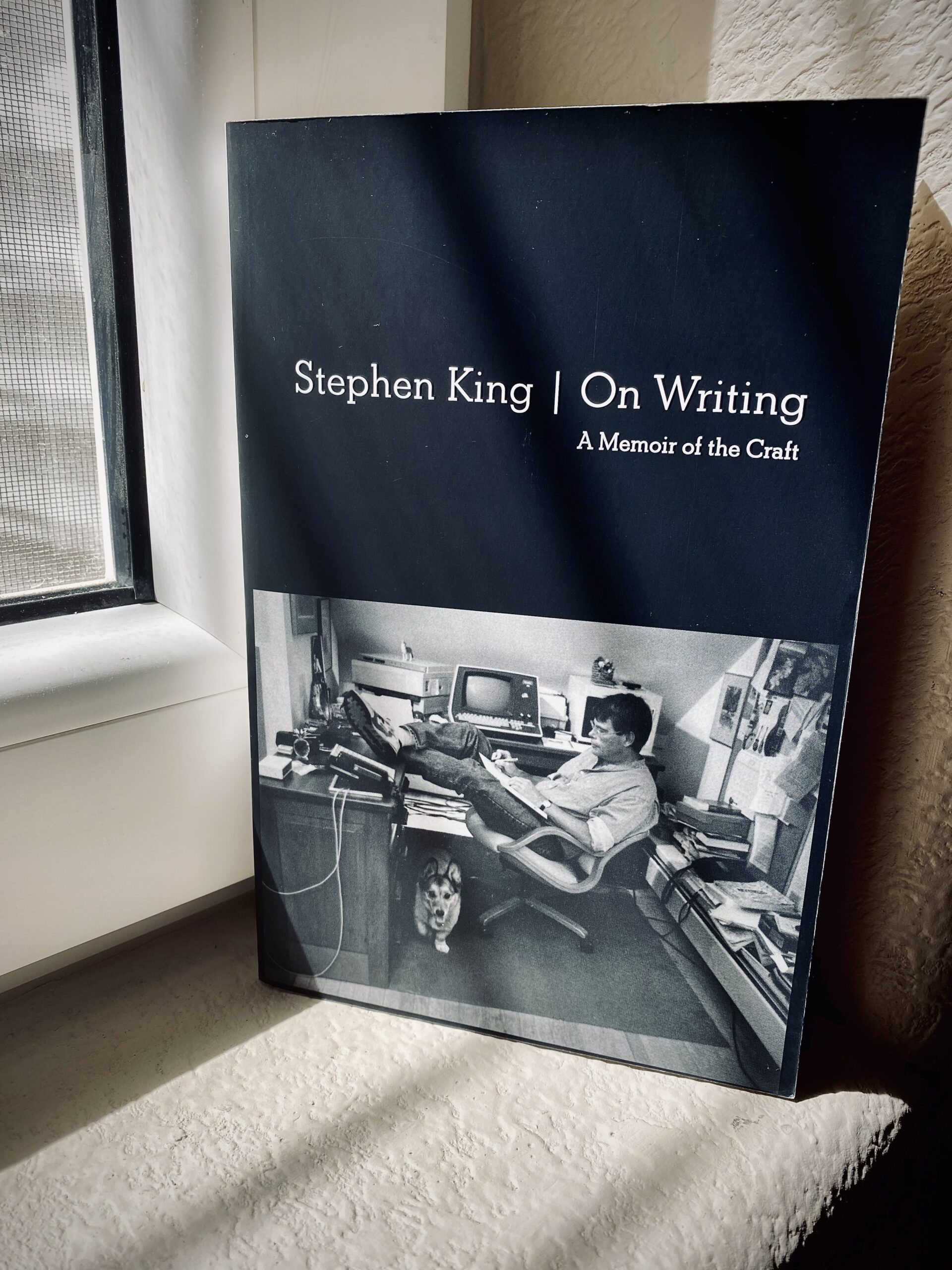 writing, writing tips, writing technique, stephen king, writing well, best books on writing