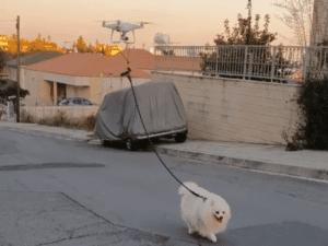 drone dog