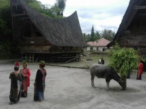 Lake Toba village