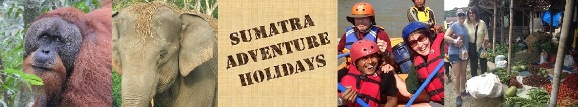Sumatra Adventure Holidays Logo