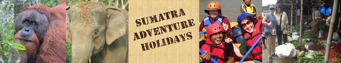 Sumatra Adventure Holidays Logo