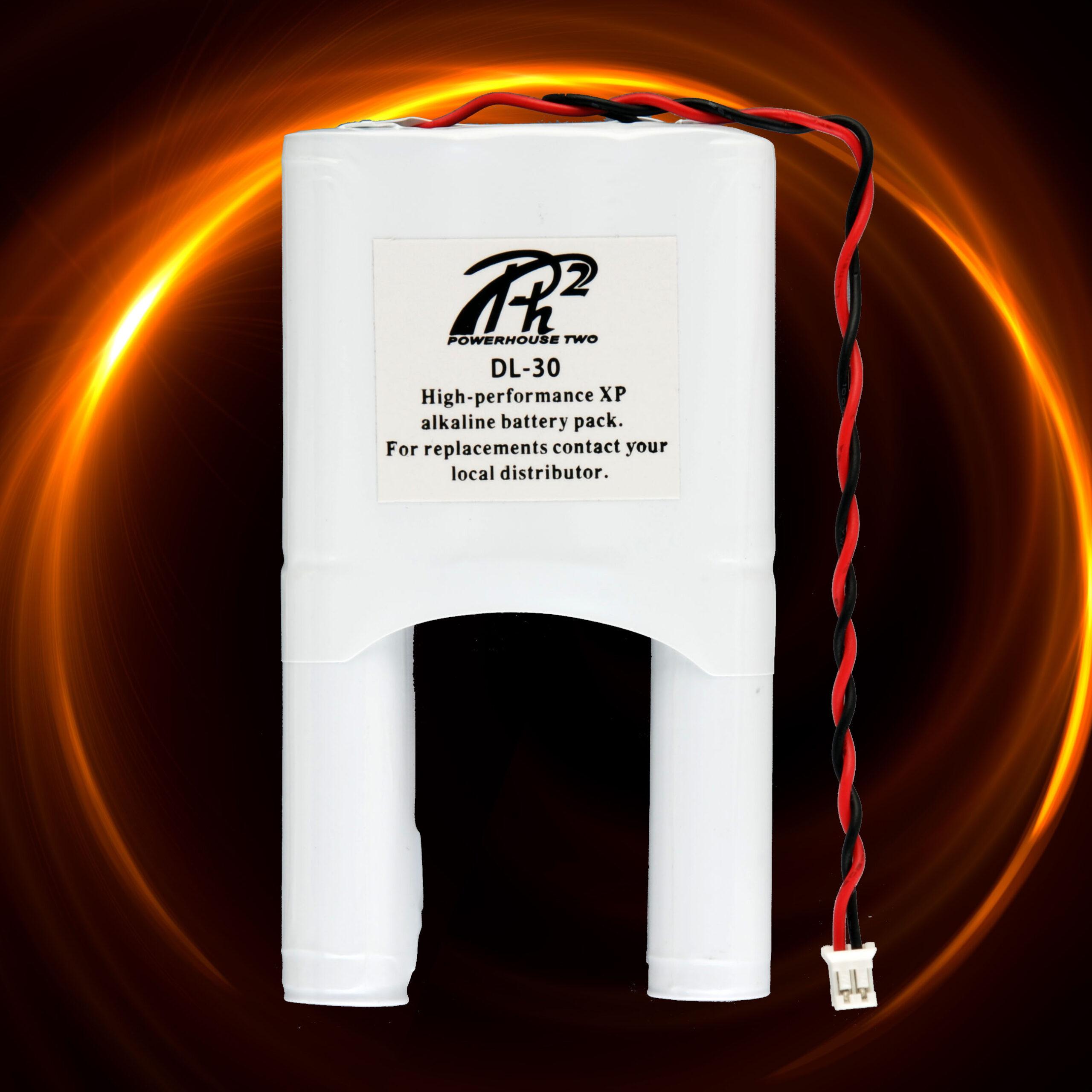Custom Alkaline Battery Pack