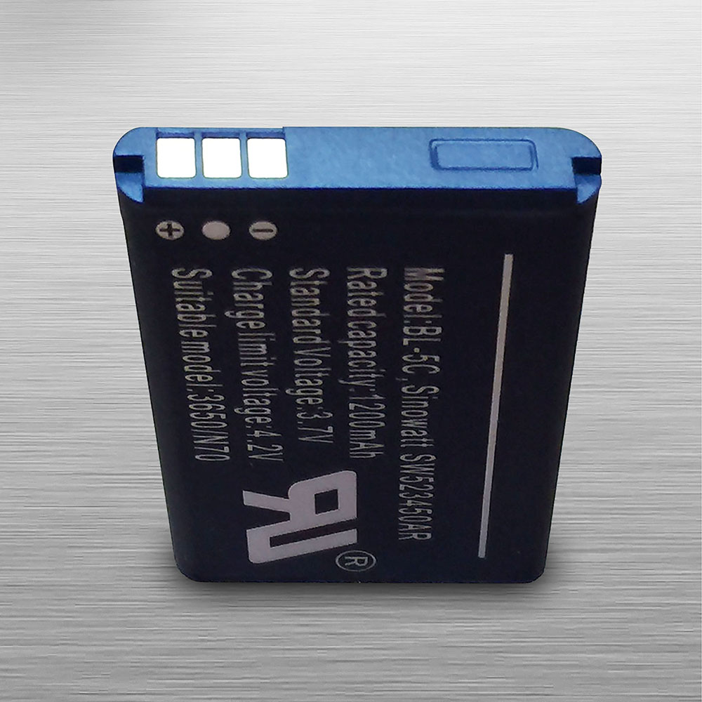 Custom Lithium Battery Example 3